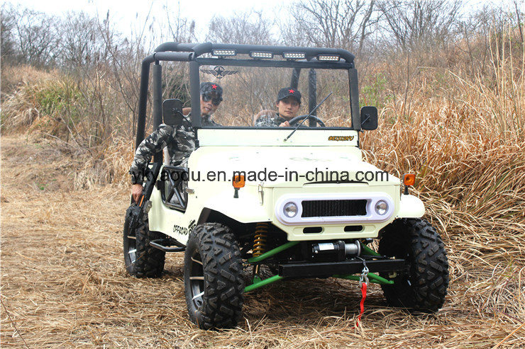 Ce 250cc ATV Electric ATV for Farm