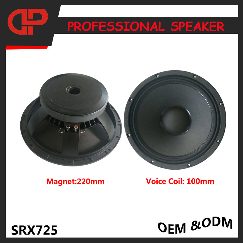 Stage PRO Audio Speaker Dual 15 Inch Loudspeakers Srx725