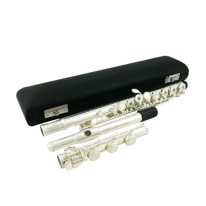 17holes Flute with E Mechanism / Woodwind Instrument (FL-200S)