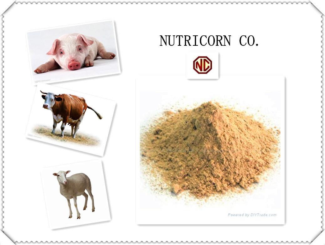 Nutricorn 98.5% L-Lysine Feed Additive with High Quality
