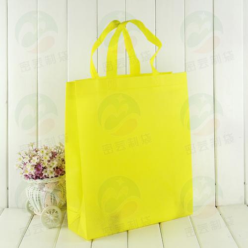 Top Sell Fashion Shopping Non Woven Bags Non Woven Bag (My-018)