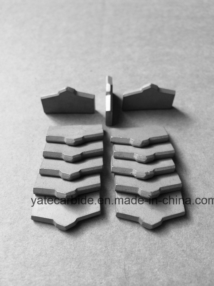 Tungsten Carbide Drill Tip for Drill Bit