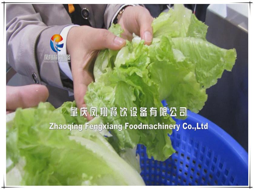 Fzhs-15 Vegetable Dehydrator Drying Machine Kitchen Equipment