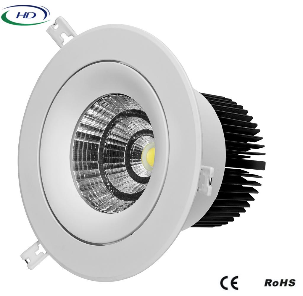 30W/40W COB-W Series Adjustable LED Downlight