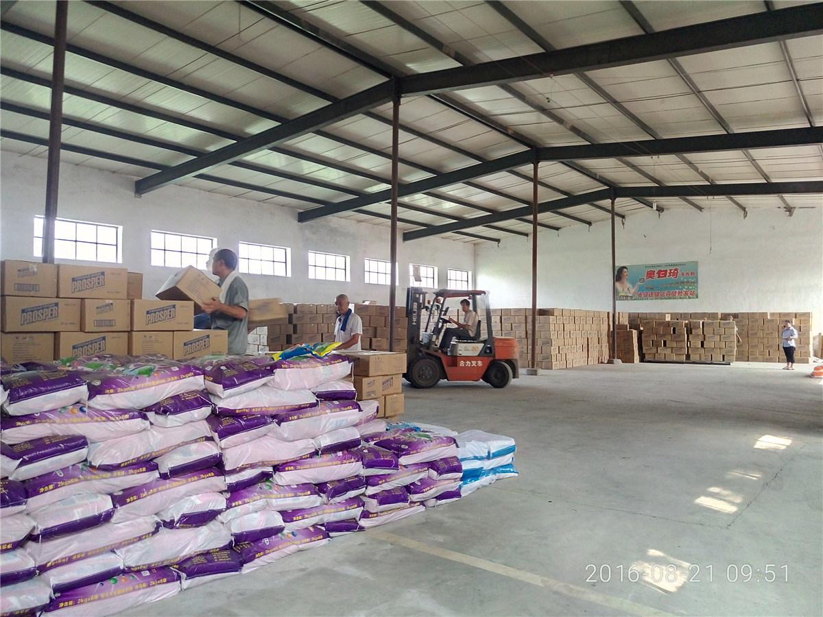 Best Price Detergent Washing Powder Producer in China