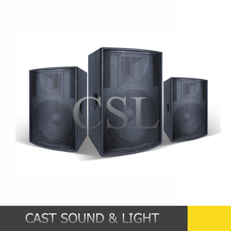 Professional Audio Speaker PA System with Multi-Function