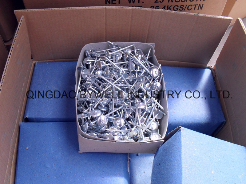 Roofing Nails Q195 Steel Produce Gavanized Nails with Best Quality and Competitive Price