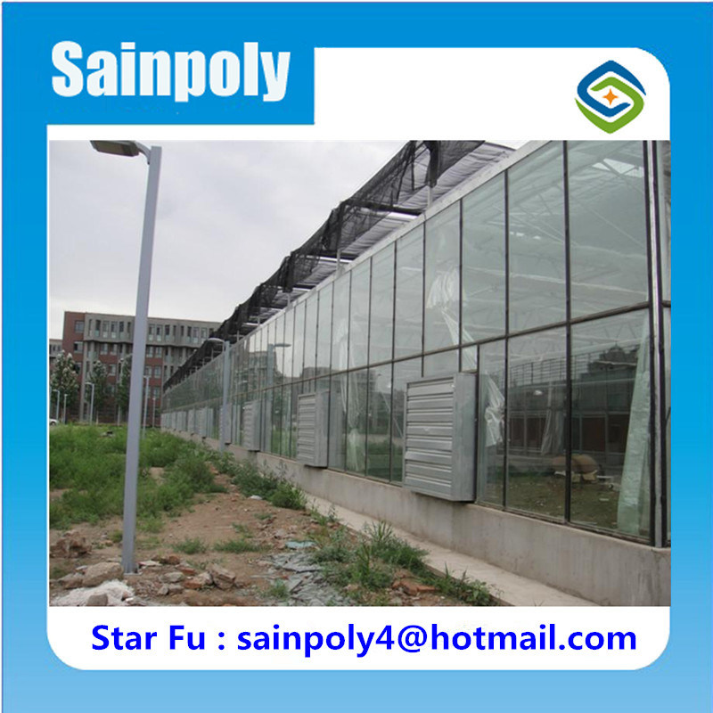 Glass Greenhouse with Complete Systems