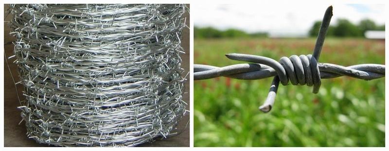 Hot Sale Galvanized Barbed Wire for Farm