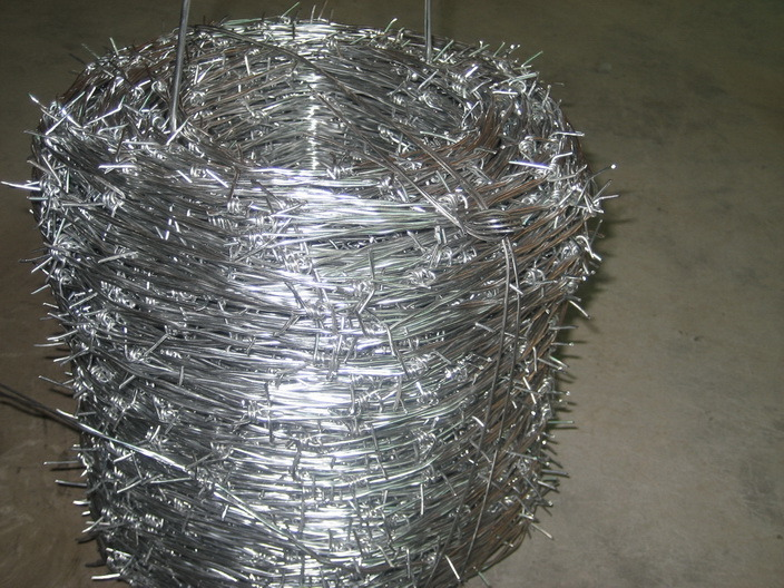 Barbed Wire (3-6 Inch)