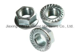 Hex Flange Nuts and Large Hex Flange Nuts (Cl. 6/8 DIN6923)