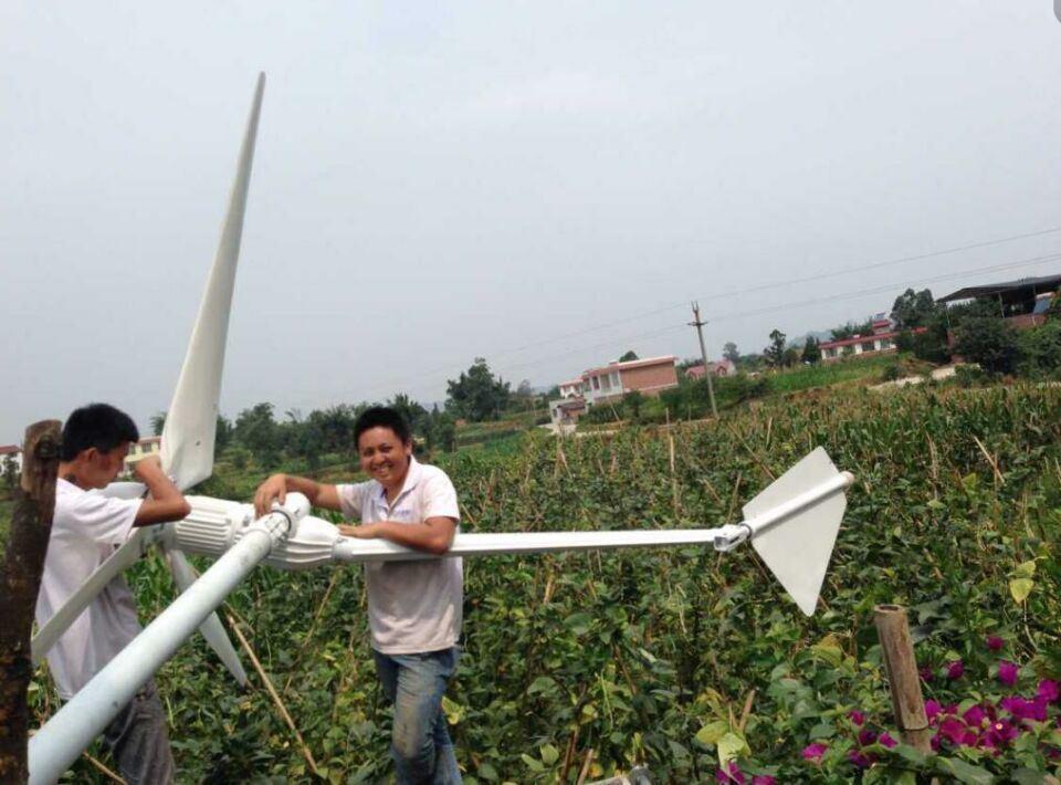 Wind Generator,Wind Turbine,Wind Mill (FD20KW)