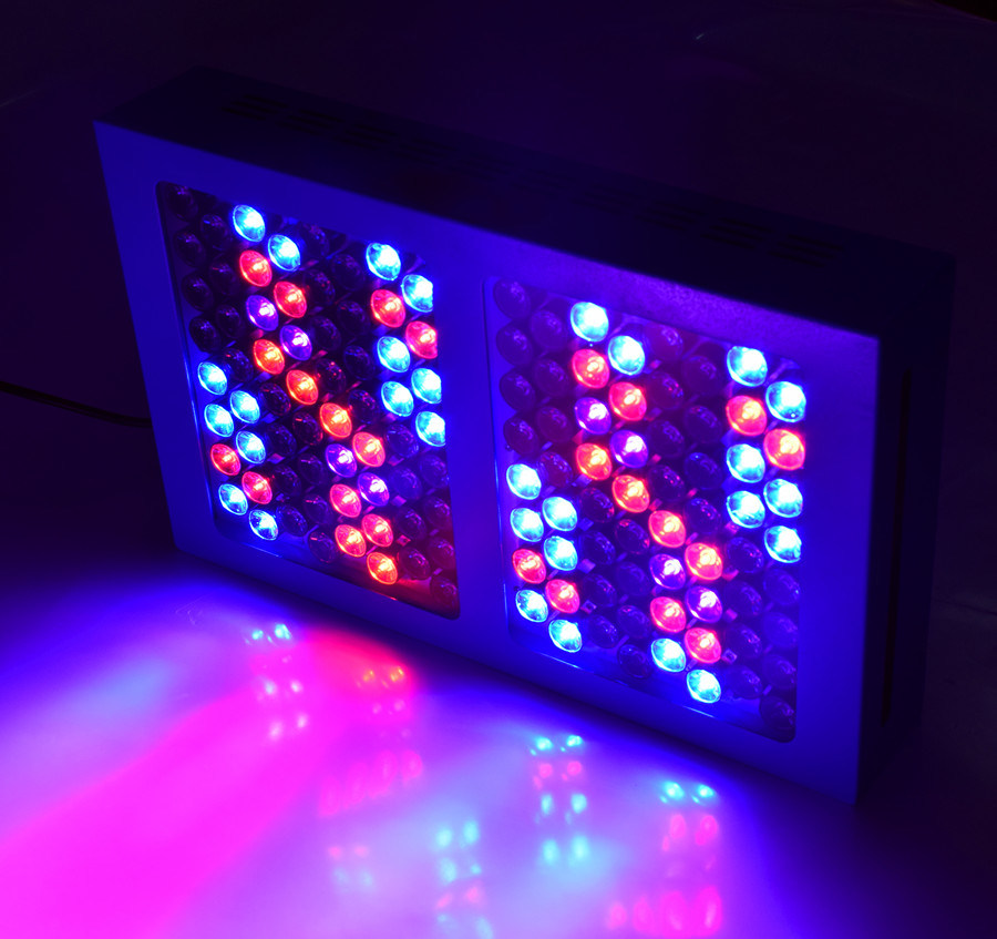 600W LED Grow Lamp for Horticultural Lighting