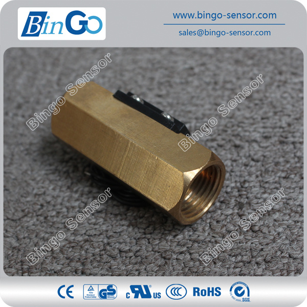 Brass Piston Type Flow Switch for Heater Pump