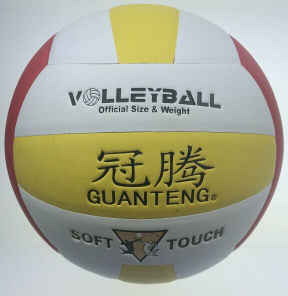 Volleyball, professional Volleyballs