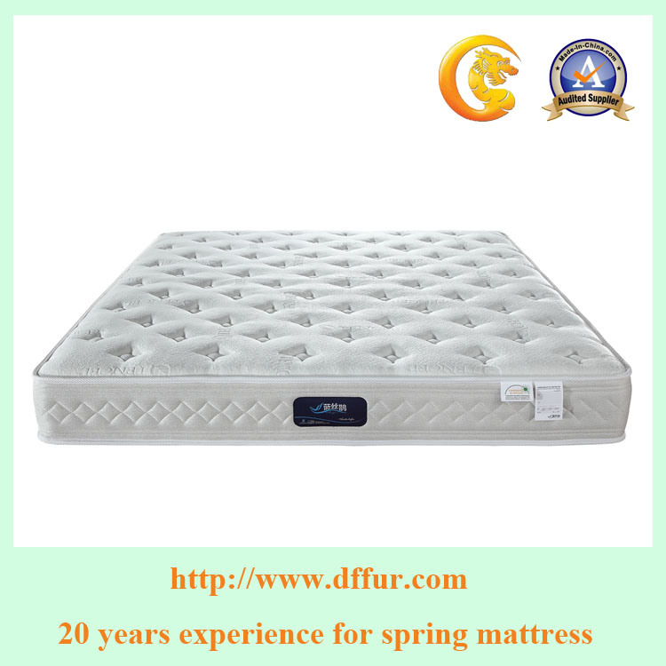 Gold Supplier China Factory Offer Pocket Spring Mattress R23