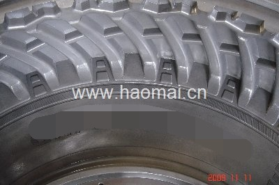 Agriculture & Truck or OTR Tire Mould