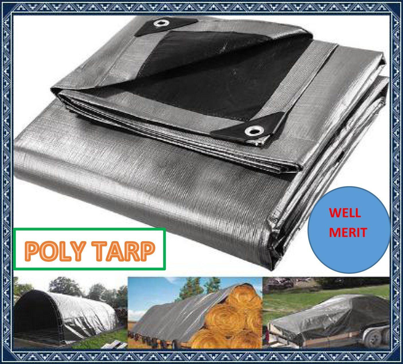 All Purpose Cover Tent Awning Lona PE Tarpaulin Poly Tarp