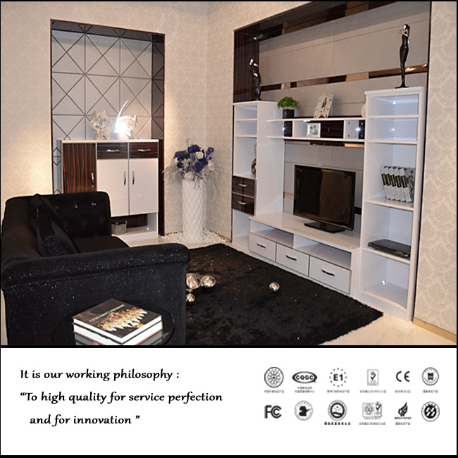 Modern Design TV Cabinet for Livingroom (FY024)