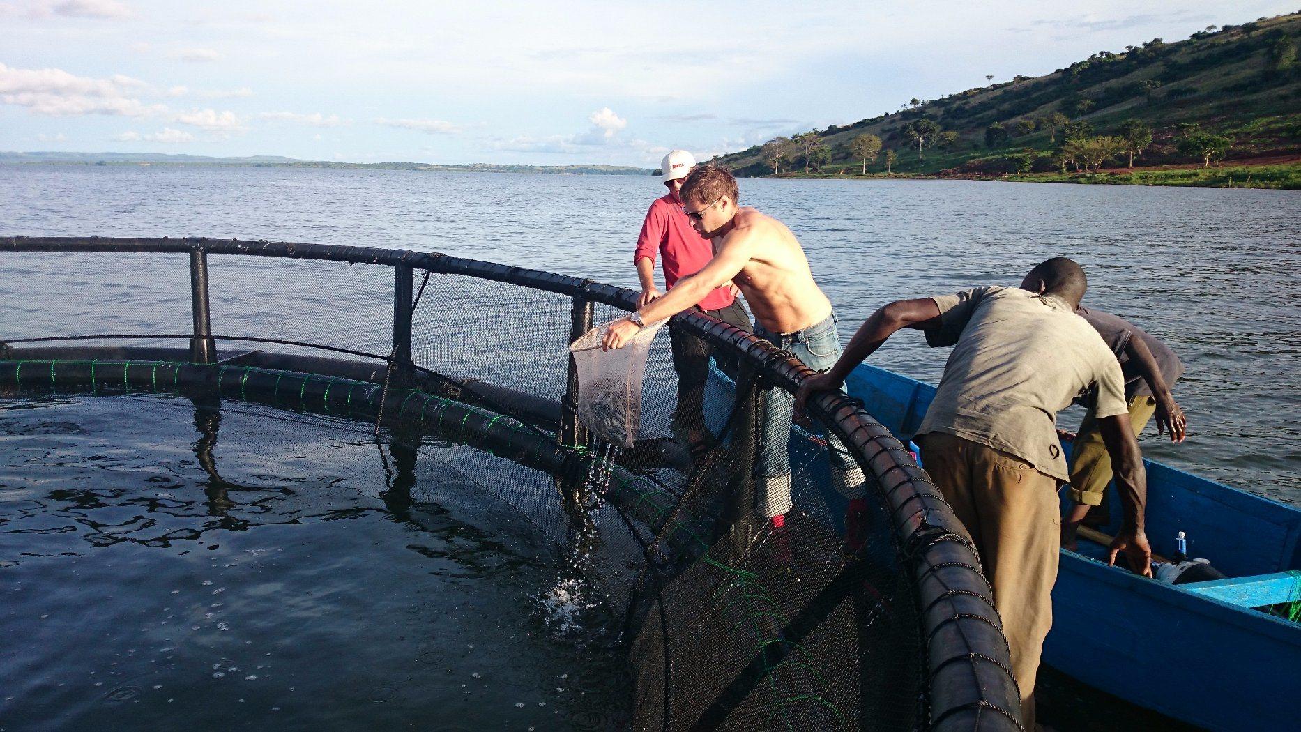 2017 Fish Farming Cage