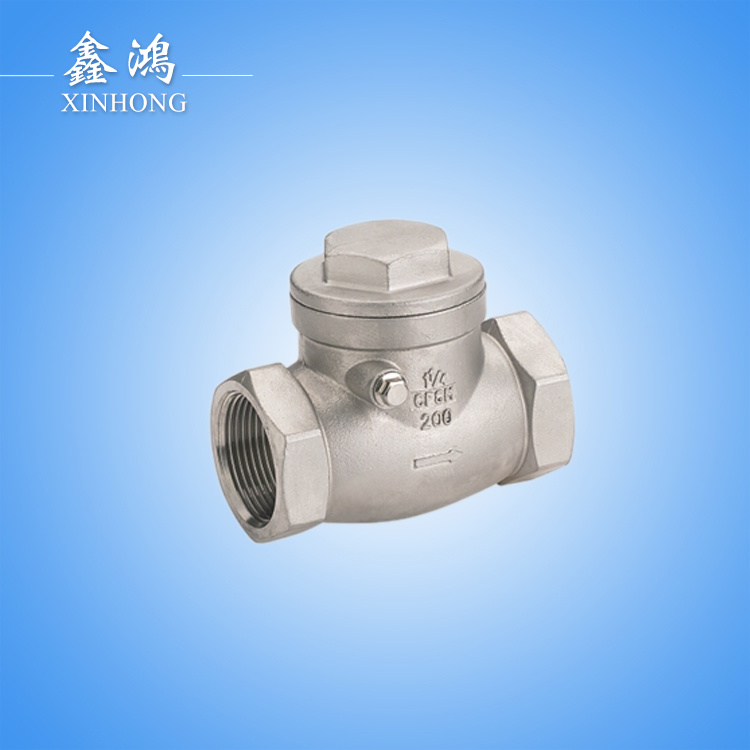 304 Stainless Steel Horizontal Check Valve Dn15