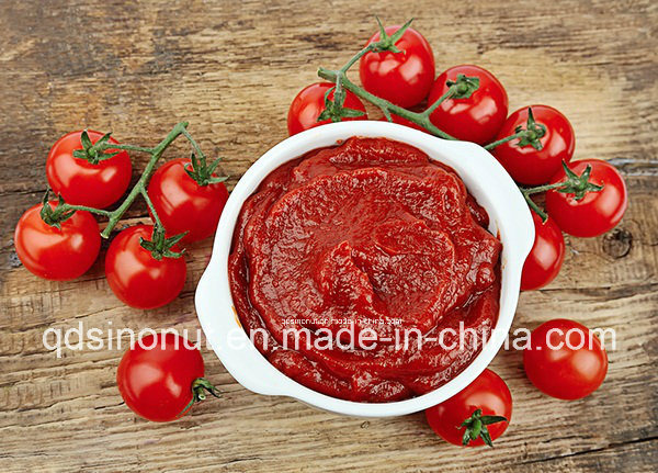 High Quality Canned Tomato Paste