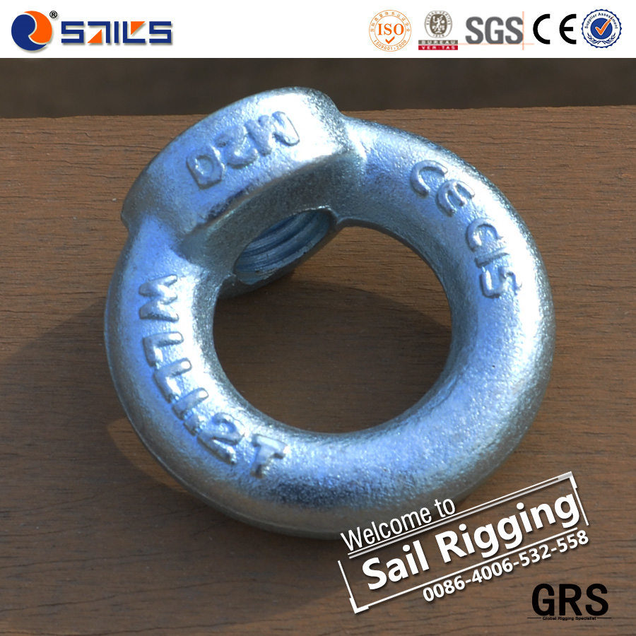 Electric Galvanized Carbon Steel Drop Forged Lifting DIN582 Eye Nut