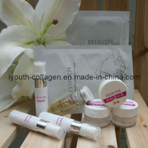 GMP, Top 100% Natural Golden Milkfish Collagen Travel Gift Box