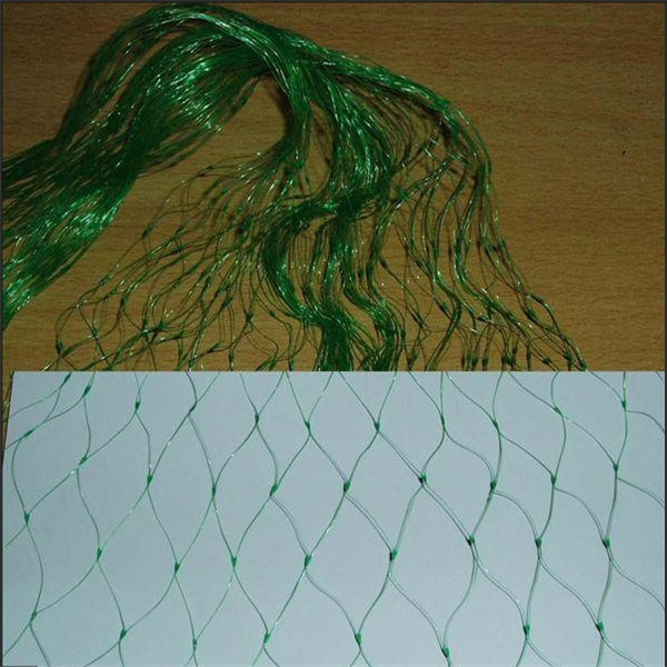 Knotless Anti Bird Net/Bird Netting/Anti Insect Net