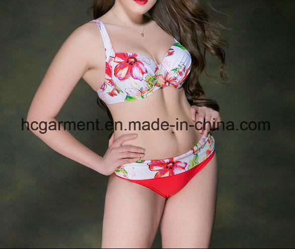 Lady′s Large Size Bikini, Plus-Size Bikini Swimming Wear