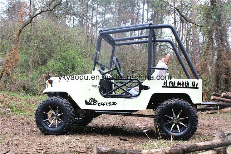 Ce 250cc ATV Electric ATV for Farm