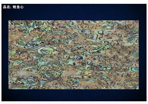 Eh Grade New Zealand Abalone Shell Sheet/Shell Paper