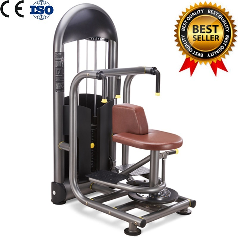 Gym Fitness Equipment Rotary Torso with 3 Years Warranty