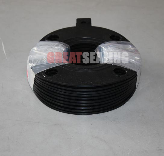 Rubber Seal Gasket for Flange with Excellent Performance