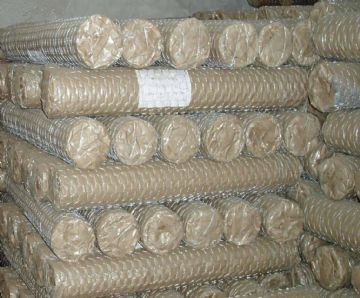 Galvanized Iron Hexagonal Wire Mesh