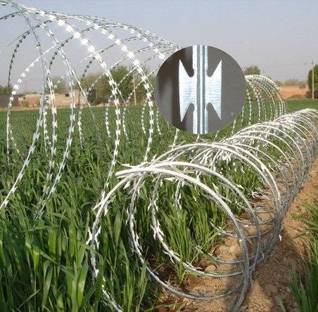 Galvanzied Razor Barbed Wire (S041)