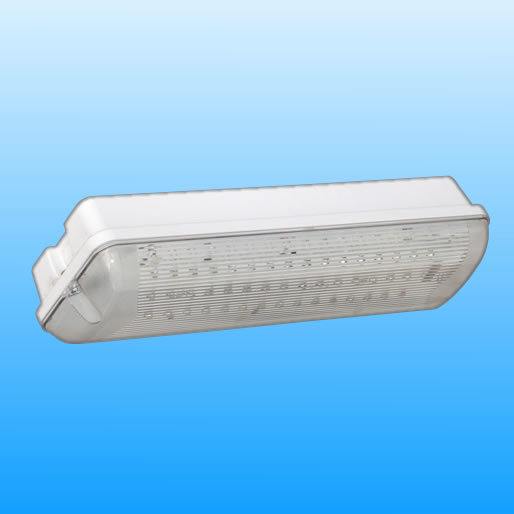 2017 European Standard Hot Sale LED Emergency Light (Pr208/LED/M)