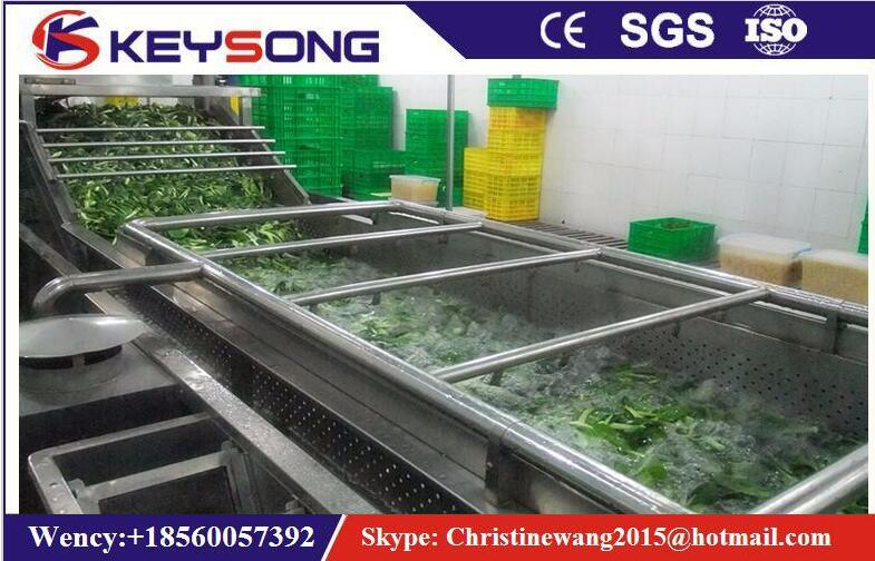 Large Scale Vegetable Fruit Food Washing Machine