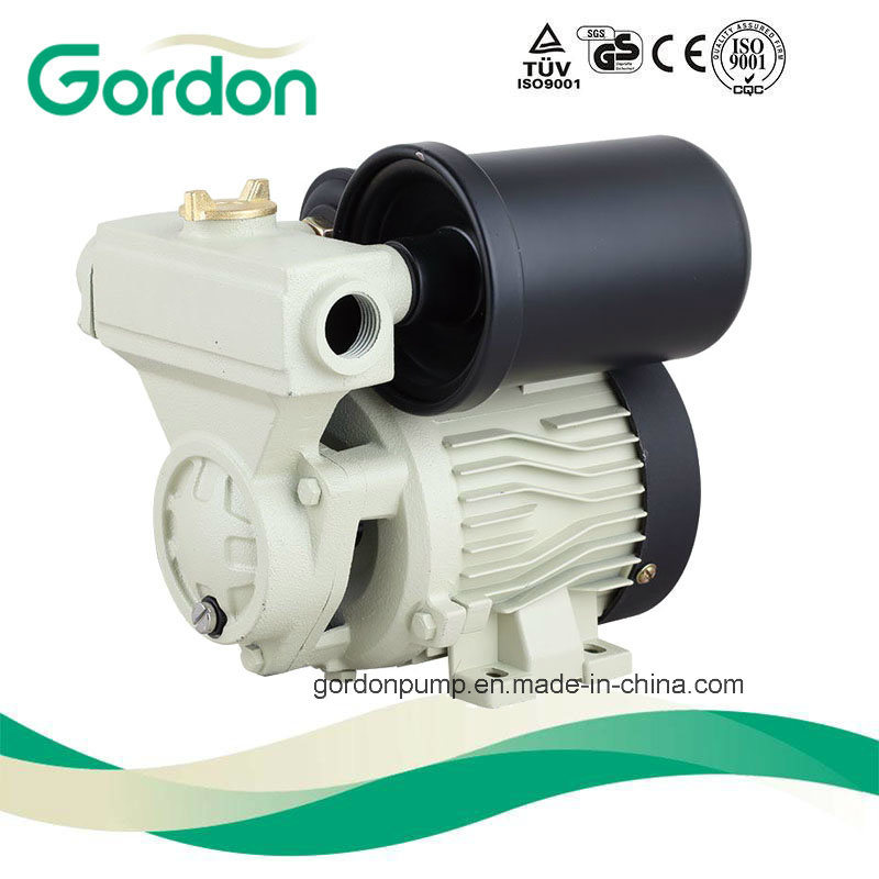 GA101 Stainless Steel Shaft Domestic Electric Small Vortex Water Pump