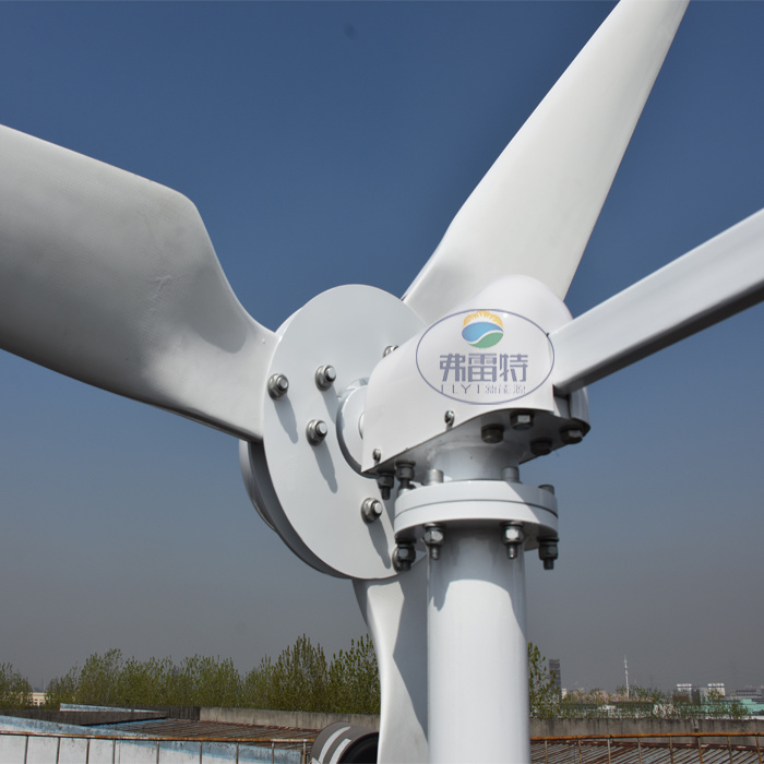 1kw Max Power 2kw 48V 96V Wind Generator