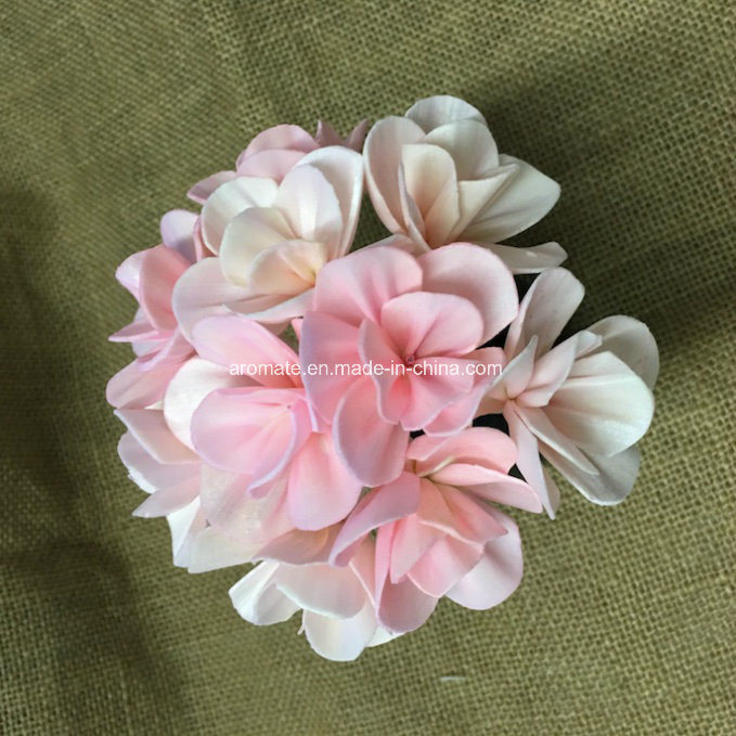 Color Mixed Handmade Sola Wood Flower for Decoration (SFA43)