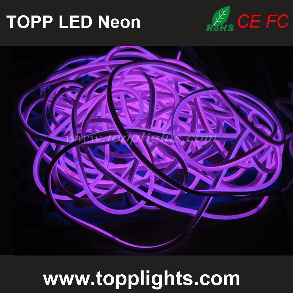 Top Quality 12V 24V LED Neon Lights for Motorcycles