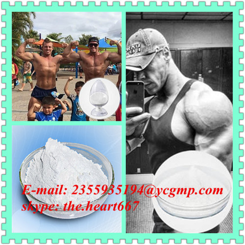 High Quality Testosterone Acetate CAS 1045-69-8