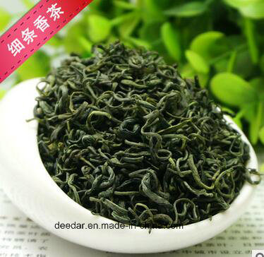 New Season Green Tea