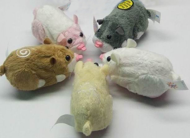 Zhuzhu Pets