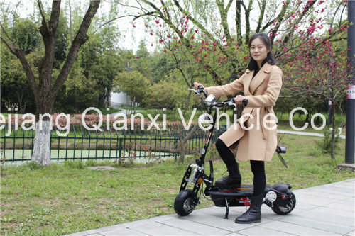 Adult Two Wheel Min E-Scooters Qx-2001