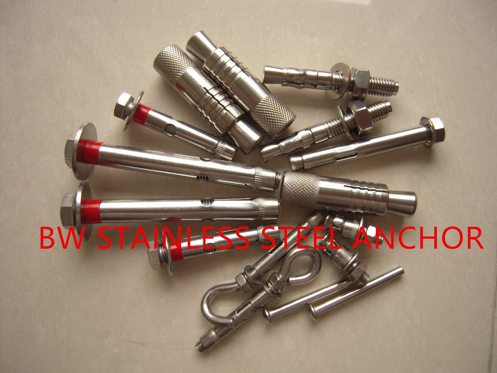 Stainless Steel 304/316 Heavy Bolt Anchor