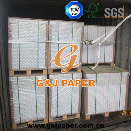 All Kinds Paper and Paper Board for Printing and Packaging