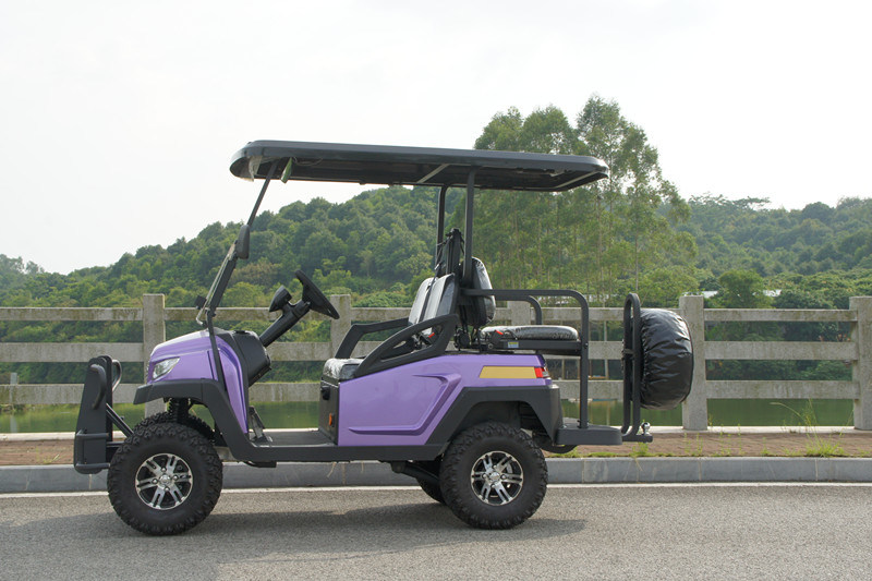 Hot Sale 48V Alum Chassis 4 Seats Electric Golf Cart