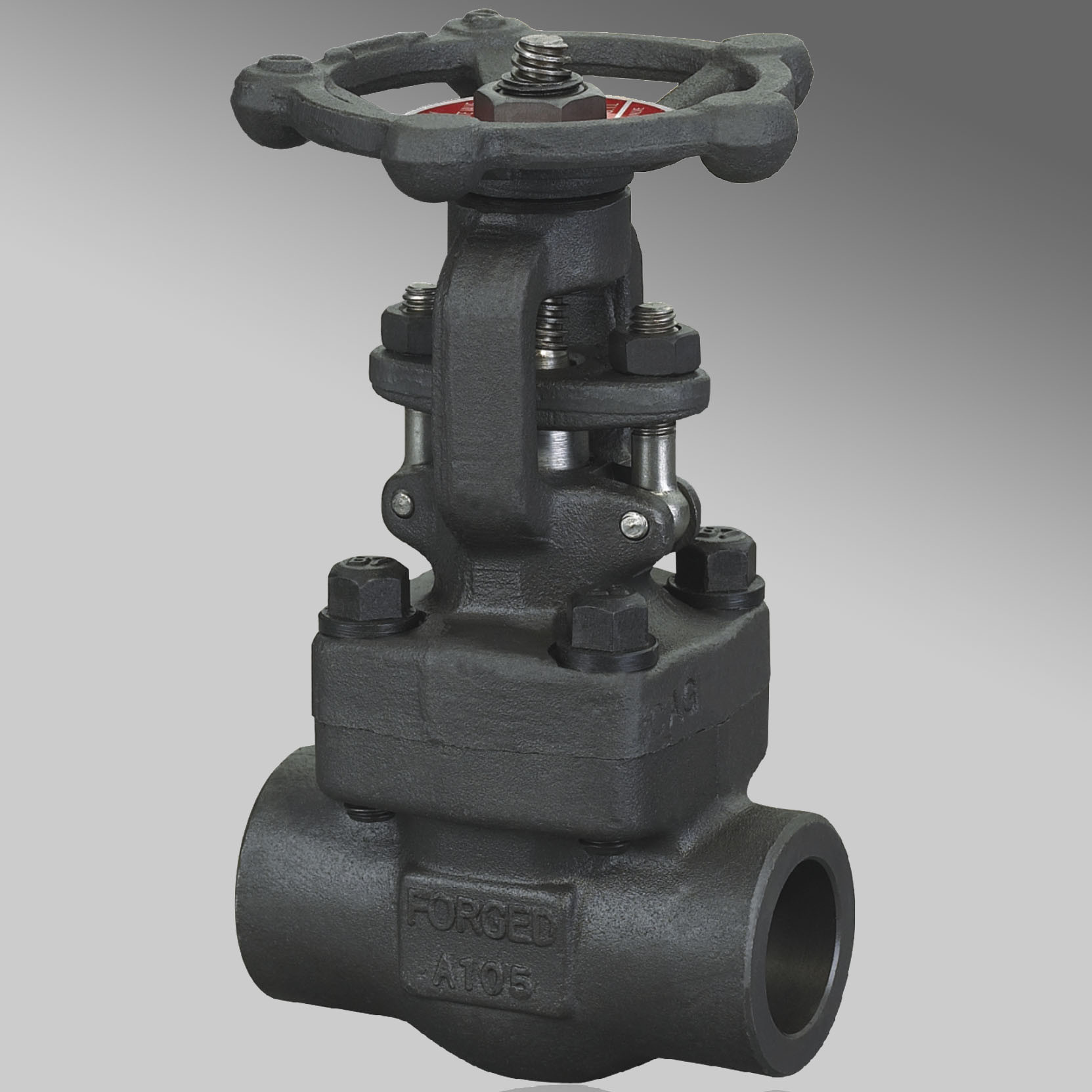 Double Flange API Forged Steel Gate Valve